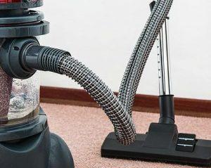 carpet for rental property