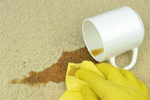 Carpet in Rental Property